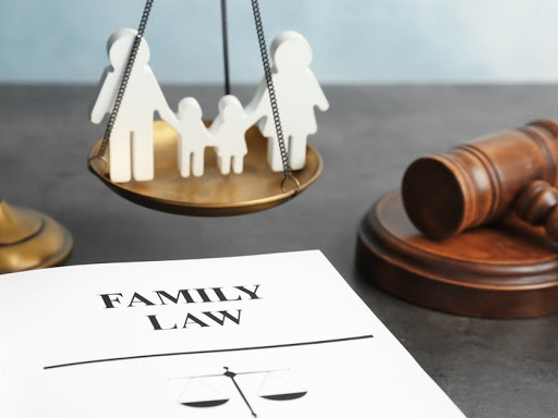 Famous and Interesting Family Law Cases