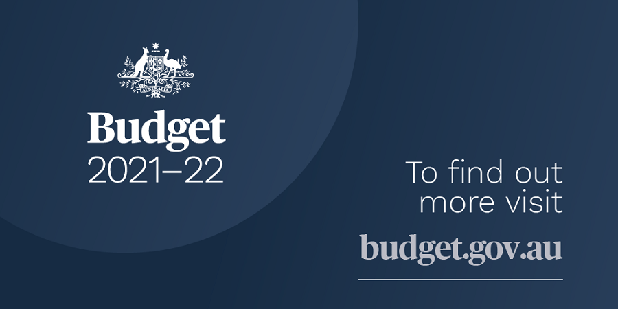 THE EFFECT OF THE 2021 BUDGET ON VISAS